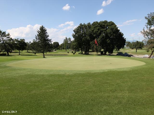 新玉村ゴルフ場の写真3