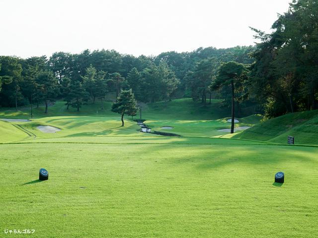 こだまゴルフクラブの写真1