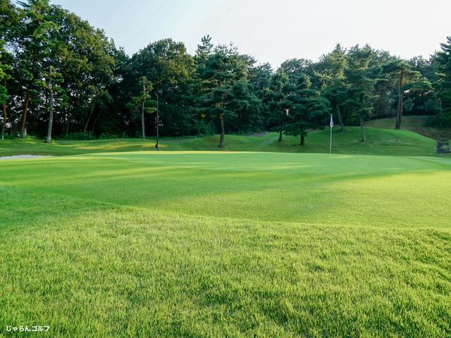 こだまゴルフクラブの写真2