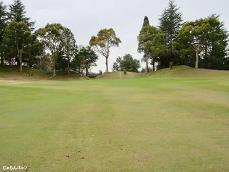 千葉新日本ゴルフ倶楽部の写真3-3