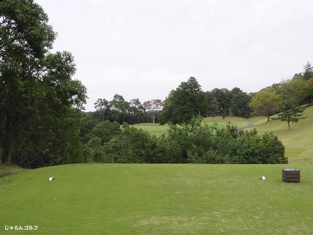 ロイヤルスターゴルフクラブの写真1