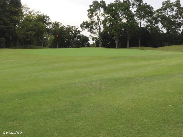 ロイヤルスターゴルフクラブの写真2