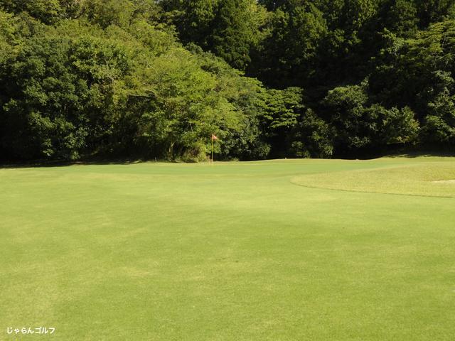 ロイヤルスターゴルフクラブの写真2-3