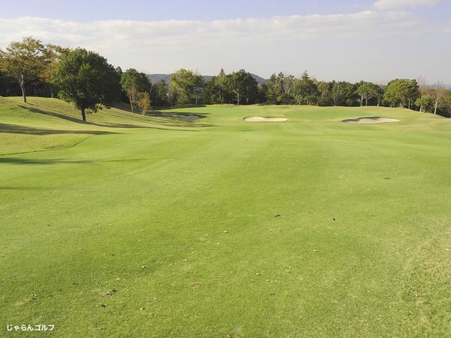 ロイヤルスターゴルフクラブの写真3-3